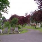 Ilford Cemetery. Photo by Boreenatra